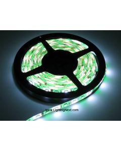 RGB + White SMD5050 Flexible LED Light Strip,12V/24VDC Available