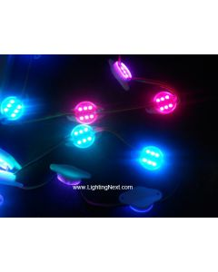 Super Bright WS2801 Digital Pixel Modules with 6 SMD5050 LEDs, DC12V, 20PCS/String