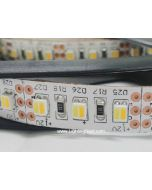 Dual Chip Color Temperature Adjustable SMD3528 LED Flexible Light Strip, 120LEDs/m