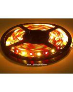 RGB + Warm White SMD5050 Flexible LED Light Strip,12V/24VDC Available