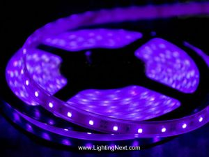 420-430nm Flexible Ultraviolet LED Strip Light, 12V DC, 300 SMD5050 LEDs/roll, 5m/roll