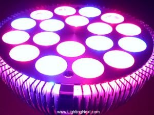 54W PAR38 E27 Red Blue (2:1) LED Grow Lamp for Flowering,Hydroponics System