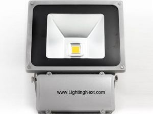 80W High Power Outdoor LED Flood Lighting (Halogen Replacement)